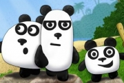 3 Panda's